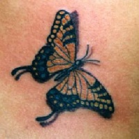 Monarch butterfly tattoo with shadow