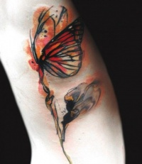 Water color  tattoo butterfly